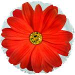 Шар (18''/46 см) Круг, Цветок, Гербера, Оранжевый, 1 шт.